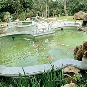 青岛专业鱼池定做电话,24小时服务