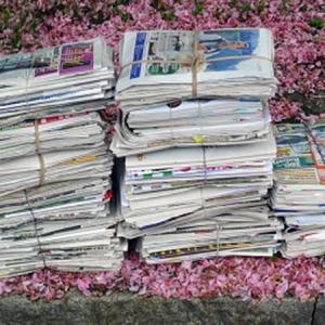 平顶山大量收购废旧报纸,书本,箱板纸