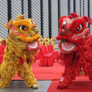 武汉舞狮演出供应,安全快捷为服务宗旨