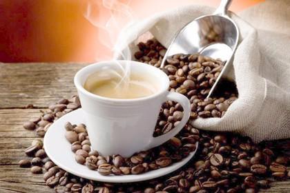 贵阳奶茶原料供应