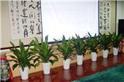 南宁植物租赁公司
