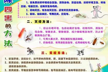 广州鼠类防治
