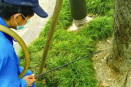 广州有害生物防治