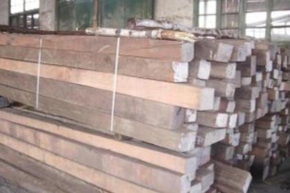 隆化县永发木材收购,您最好的选择