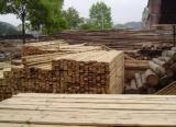 平泉县专业木材收购公司,期待您的到来