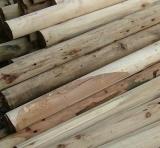 宽城满族自治县木材收购,首选永发二手木材收购公司