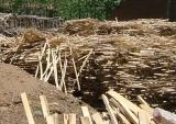 您的满意我们永恒的追求,承德木材收购