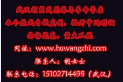 寻求与众不同的婚礼,武汉中式花轿出租,给您不一样的婚礼!