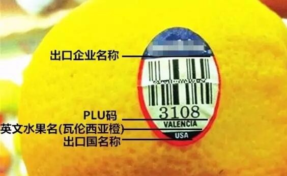 深圳报关手续