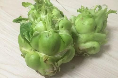 长沙有机蔬菜销售