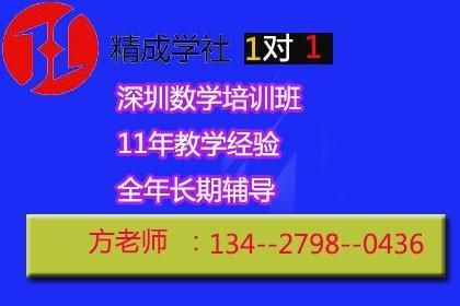 深圳初中数学补习班