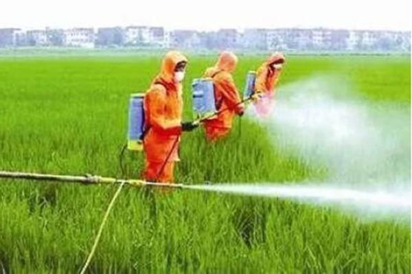 转变农业发展方式,推进农药使用量零增长