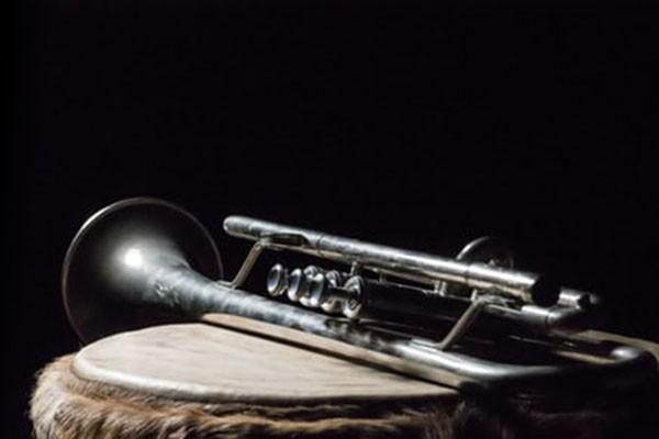 中成集团总公司向巴西圣卢西亚中学捐赠乐器