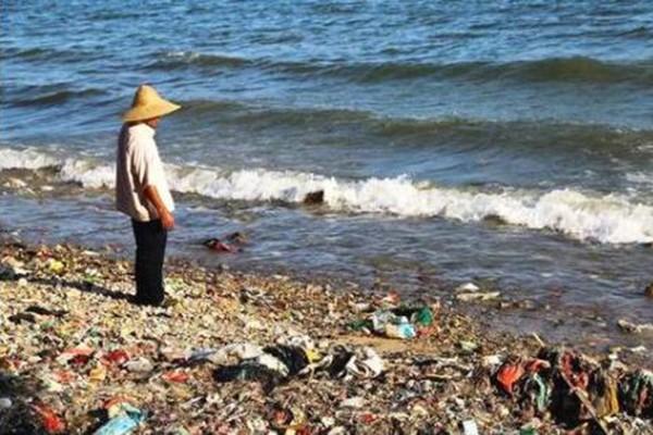 2019年河北审结破坏环境资源犯罪案件1292件