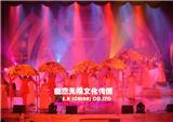 湛江高端专业演出团体