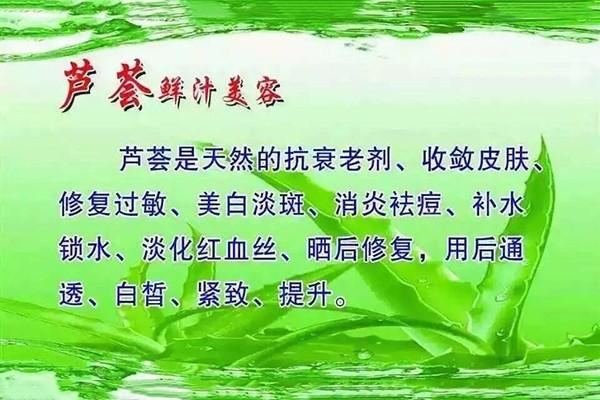武汉库拉索芦荟产地