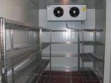 唐山大小型冷库