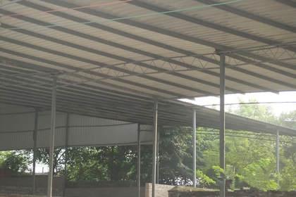 成都彩钢钢结构厂房大棚