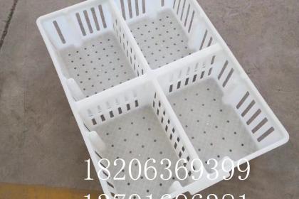 潍坊产蛋箱