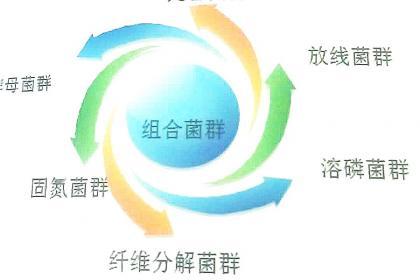 北京有机肥设备