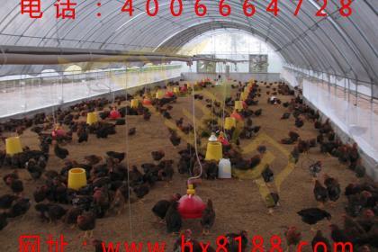 北京肥料发酵剂销售