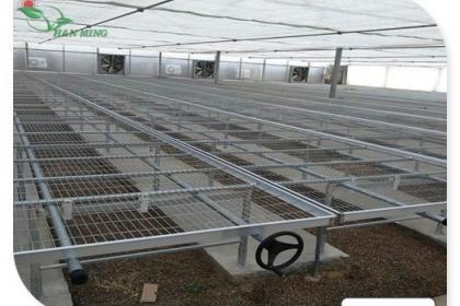 安平草莓立体种植架