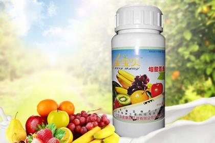 北京发酵床菌剂
