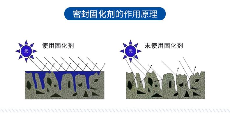 巴斯夫固化剂_08.jpg