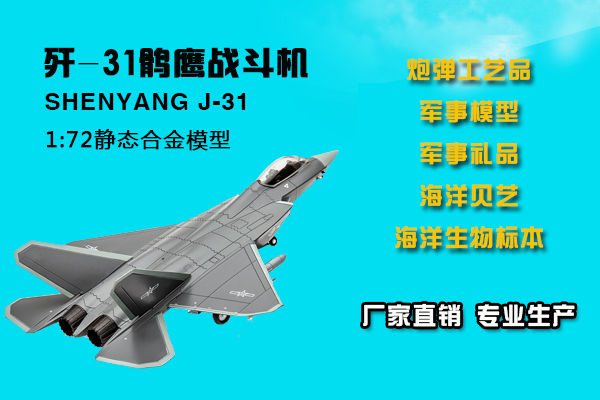 湛江军事模型设计