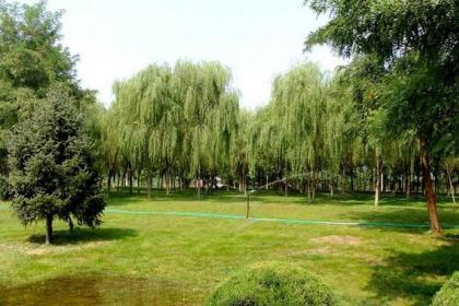 吉林草坪种植基地
