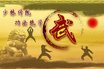 深圳青少年武术禅武双修班