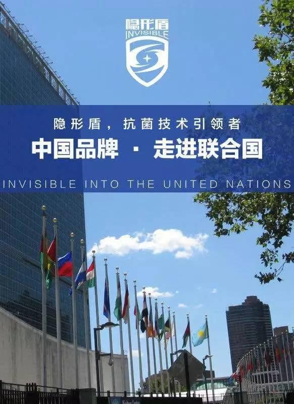 走进联合国.jpg