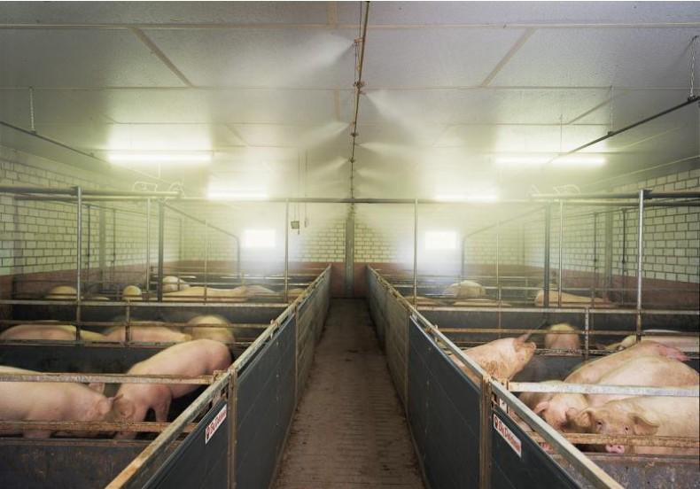 养殖场喷雾除臭设备3f.JPG