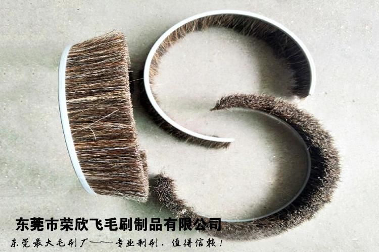QQ图片24.jpg