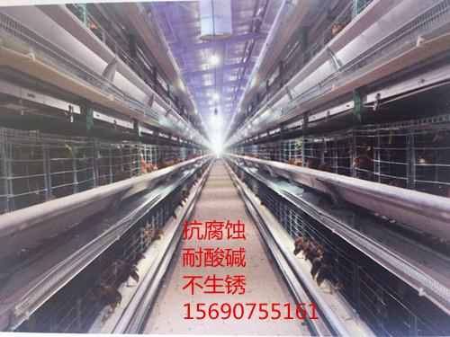 四层层叠蛋鸡笼122.jpg