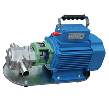 WCB单相齿轮油泵WCB-305075.jpg