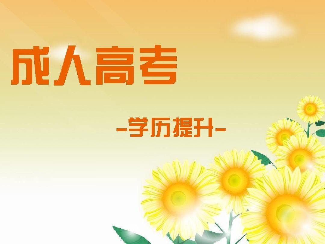 上海大学专升本报考