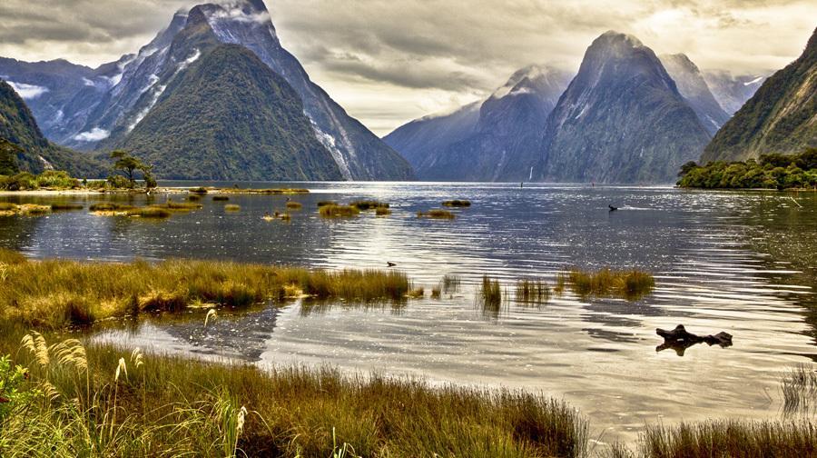 新西兰74.jpg