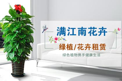 深圳租花公司