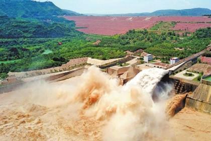 河南省政协委员建议统筹黄河流域生态保护
