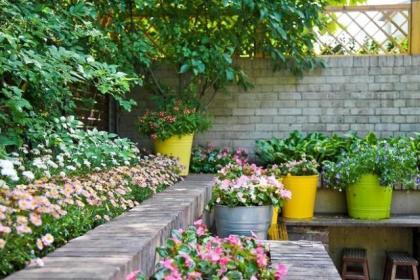 庭院景观丨设计创造诗意生活,生活因设计而美好