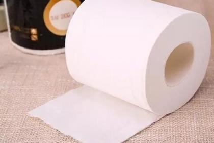 哪些因素决定卫生纸性质