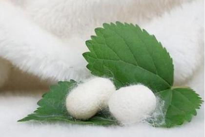 不同季节如何选择蚕丝被的厚度和重量?