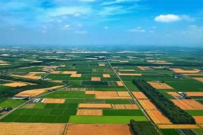 万亿级市场规模!农业托管模式谁能称王