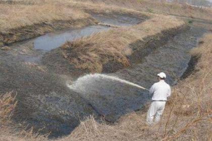 垃圾与污泥资源化技术现状与趋势