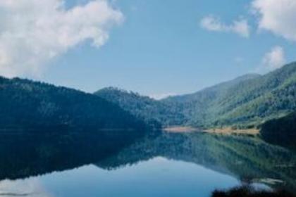 世行1.5亿美元贷款助力中国森林生态恢复