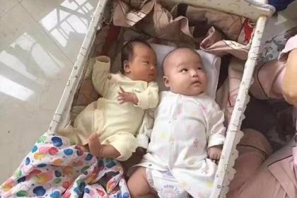 同一天出生的婴儿,一个吃母乳,一个吃配方奶,半年后差距有点大