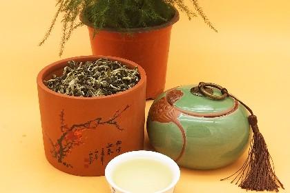 普洱绿茶06.jpg