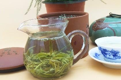 绿茶07.jpg