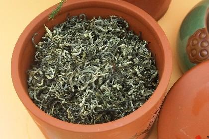 普洱绿茶03.jpg